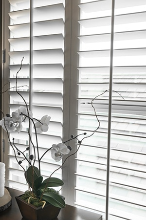 White window shutters and vase